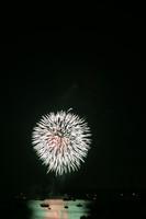 8204 July 4th fireworks 2006