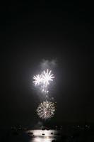 8210 July 4th fireworks 2006