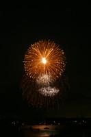 8229 July 4th fireworks 2006