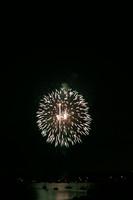 8231 July 4th fireworks 2006