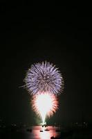 8259 July 4th fireworks 2006