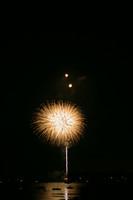 8304 July 4th fireworks 2006