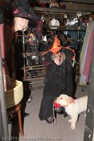 6097 Halloween on Vashon 2011