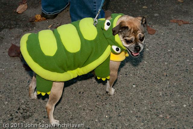 6244 Halloween on Vashon 2011