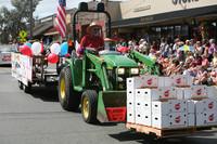 8215 Grand Parade Festival 2009