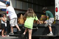 8239 Grand Parade Festival 2009