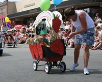 8295 Grand Parade Festival 2009