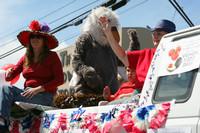 8779 Grand Parade Festival 2009