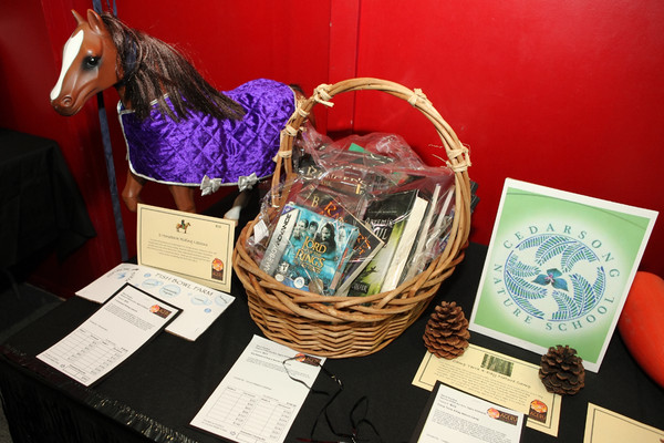 0389_Ageru_PTSA_Auction_2010
