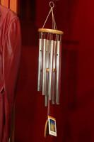 0419 Ageru PTSA Auction 2010