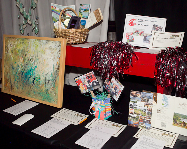 3383_PTSA_Auction_2011_051411