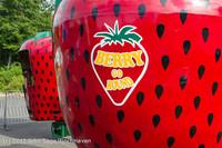 6238 Around Strawberry Festival Friday 2012